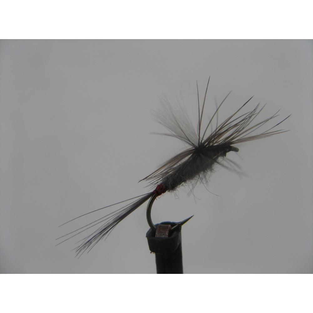 Para Dry Iron Blue Dun Size 14