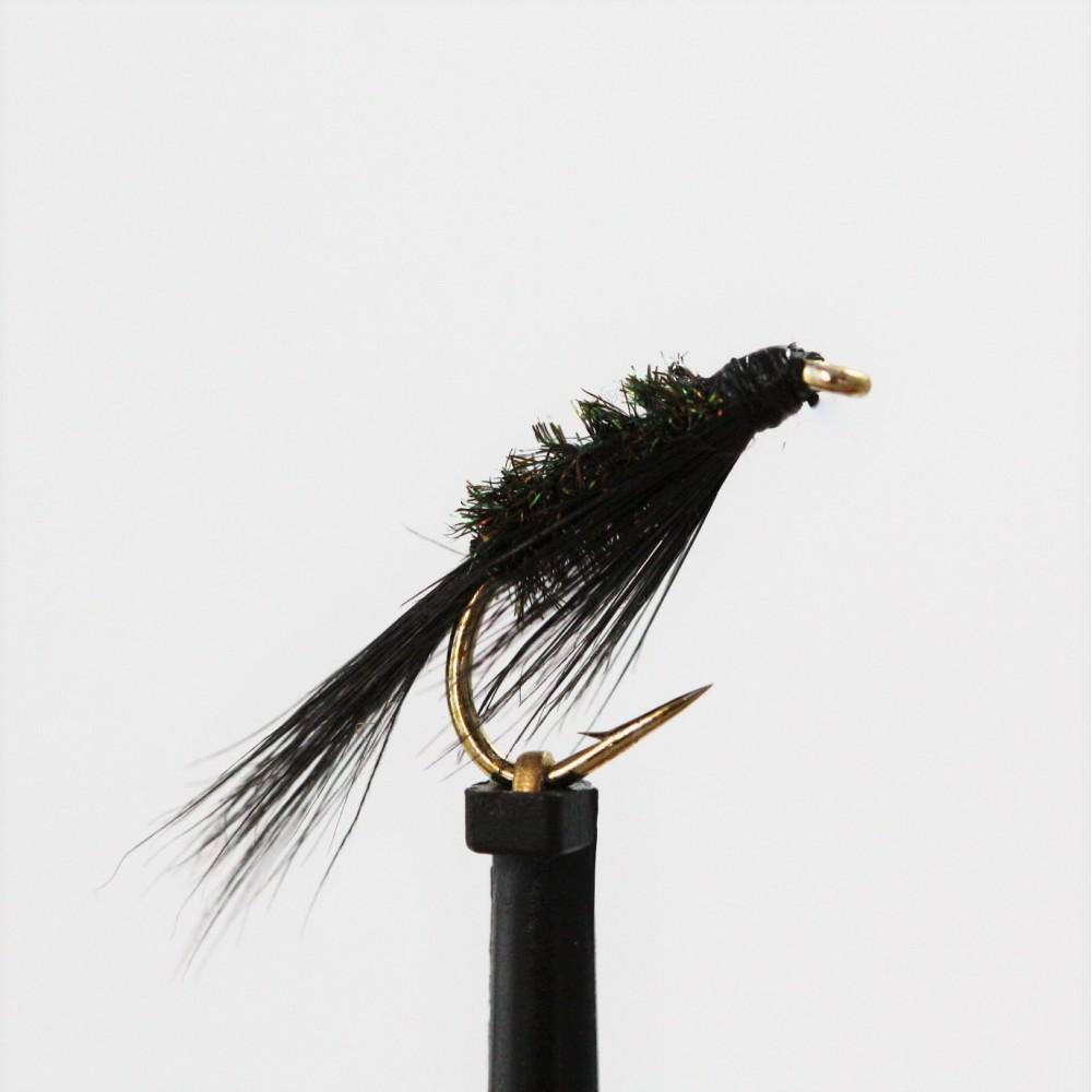 Black & Peacock Diawl Bach
