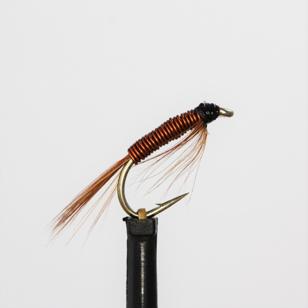 Copper Diawl Bach
