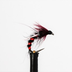 Black and Claret Emerger...