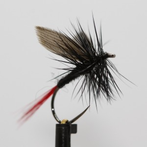Black & Red Gnat Dry Barbless