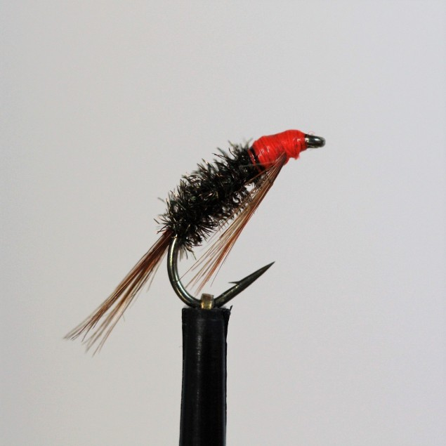 Fluo Red Head Diawl Bach