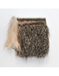 Fox Squirrel Patch