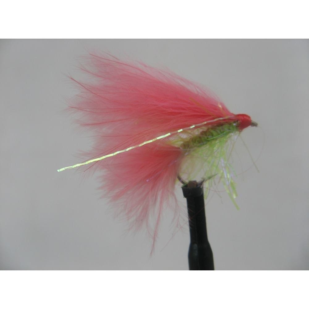 Coral Flash Size 10