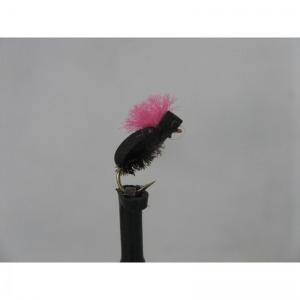 Foam Beetle Pink Proctor Size 14